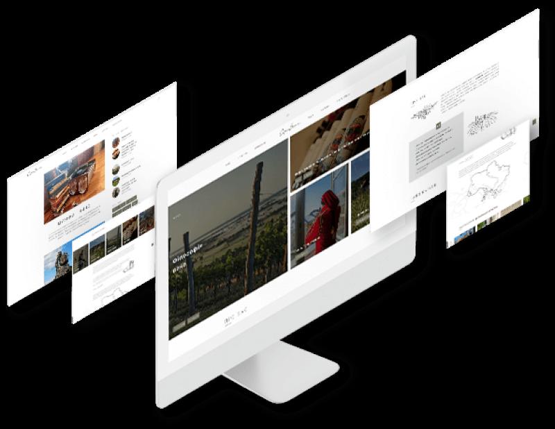 portfolio-case image